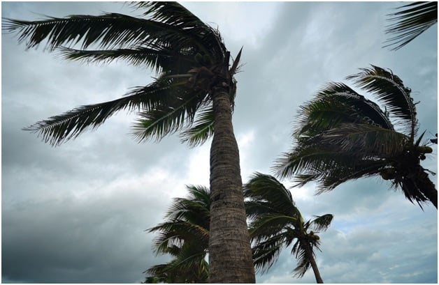 Hurricane Season Underway – How Are Floridians Getting Ready?